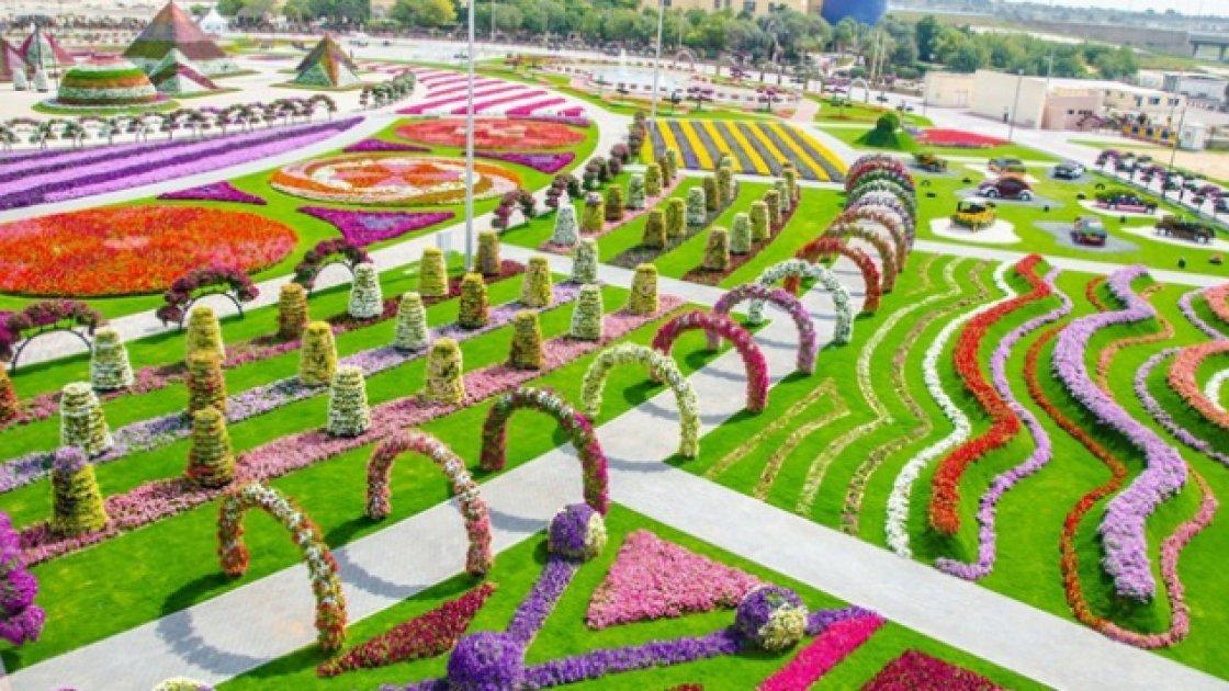 oae-novyi-sezon-v-parke-miracle-garden-v-dubae-13863536177251_w687h357