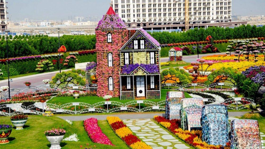 DMG-парк-цветов-эмиратка