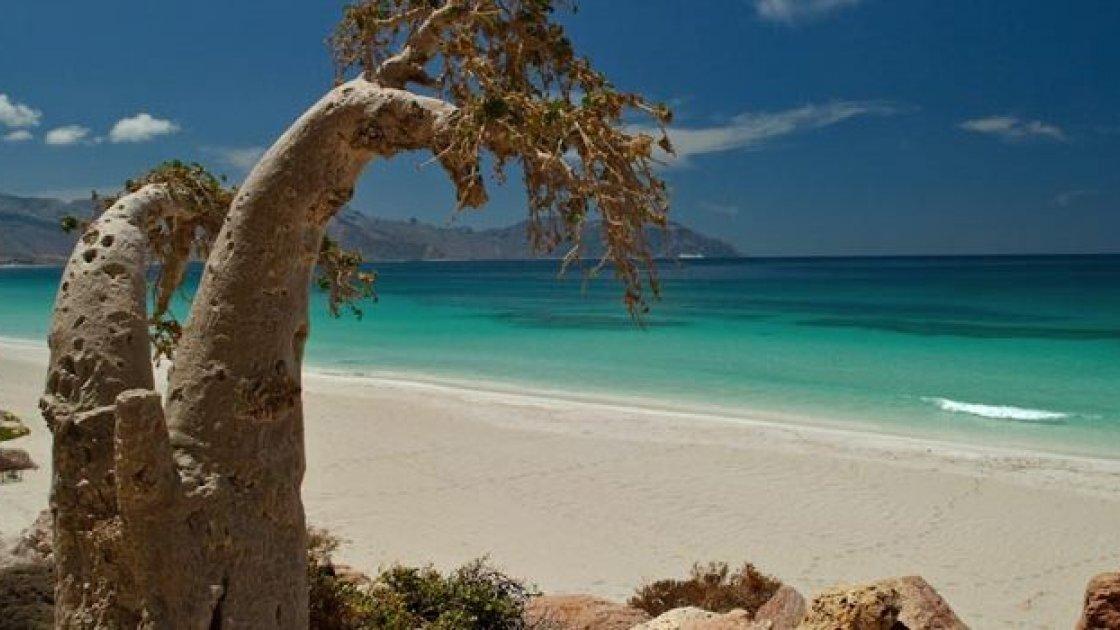 Остров Сокотра в Йемене -1
