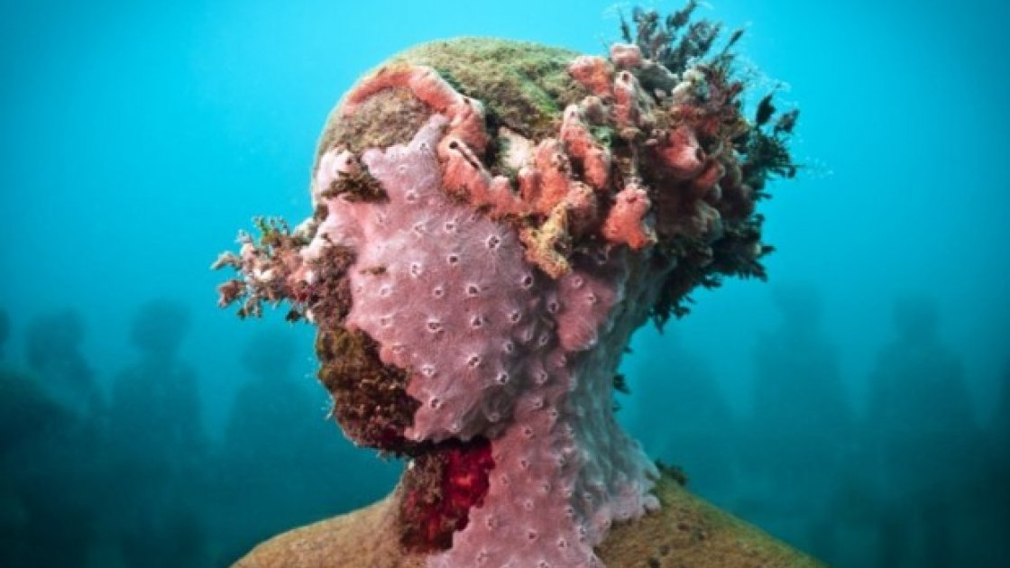 Подводный музей в Мексике «Тихая эволюция» кораллы