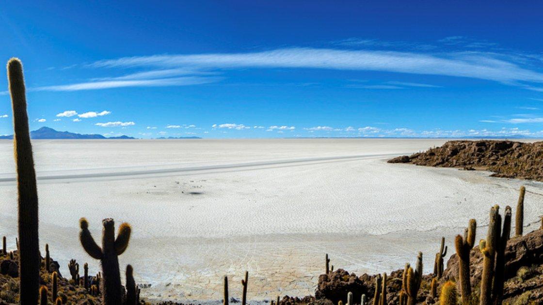 Солончак де Уюни в Боливии – кактусы