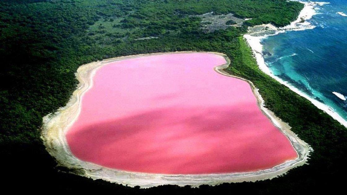 Розовое озеро Хиллер в Австралии3