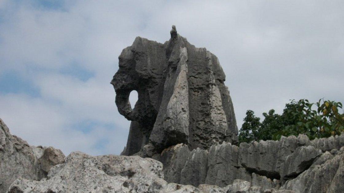 Каменный Лес Шилинь 3