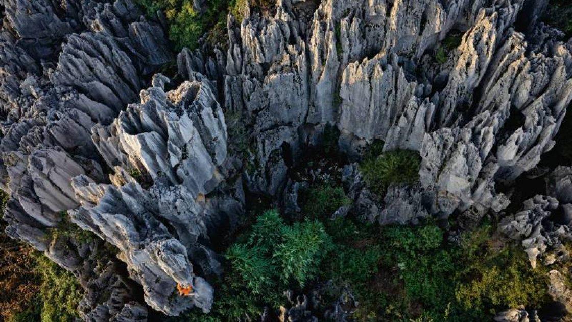 Каменный Лес Шилинь 1