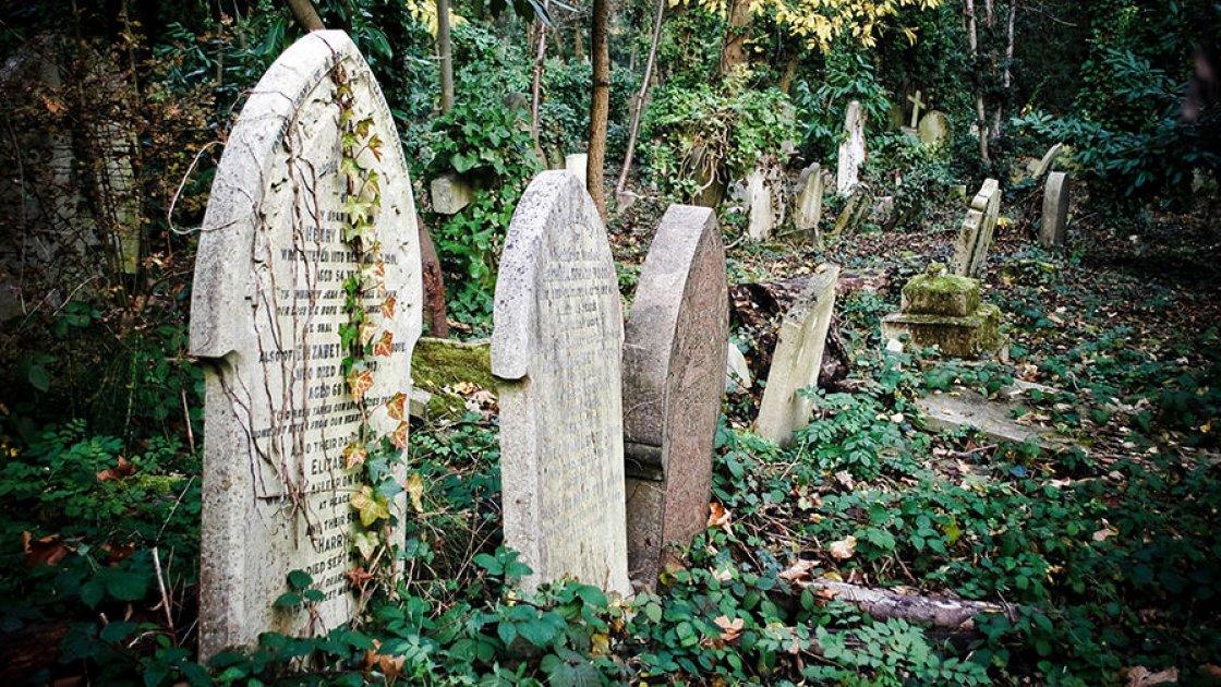 Хайгейтское кладбище 5