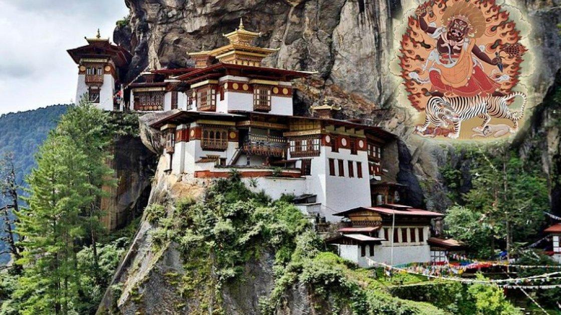 Гнездо тигрицы в Бутане 3