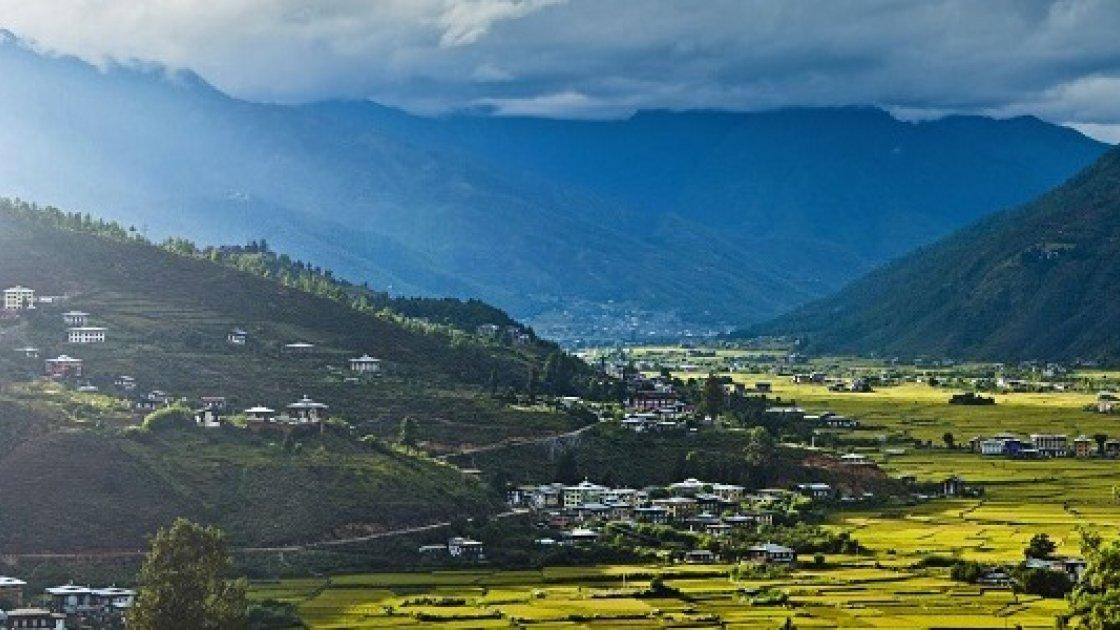 Гнездо тигрицы в Бутане 5
