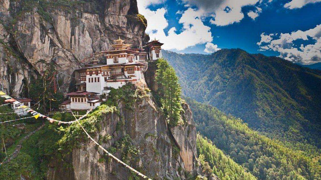 Гнездо тигрицы в Бутане 1