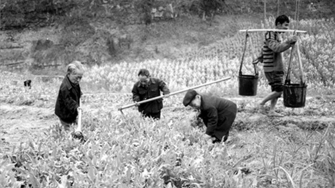 Загадки китайской деревни карликов3