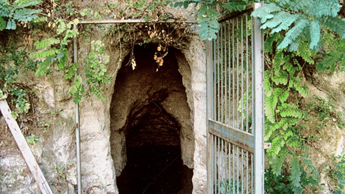 Собачья пещера4