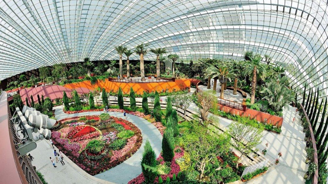 парк в сингапуре3