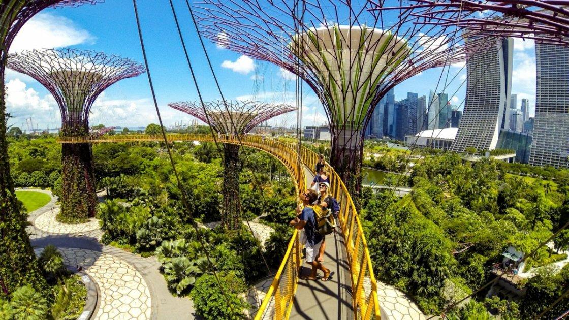 парк в сингапуре2